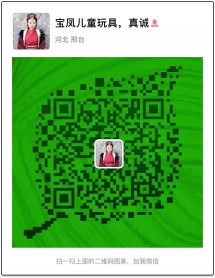 河北省邢台宝凤儿童玩具有限公司二维码