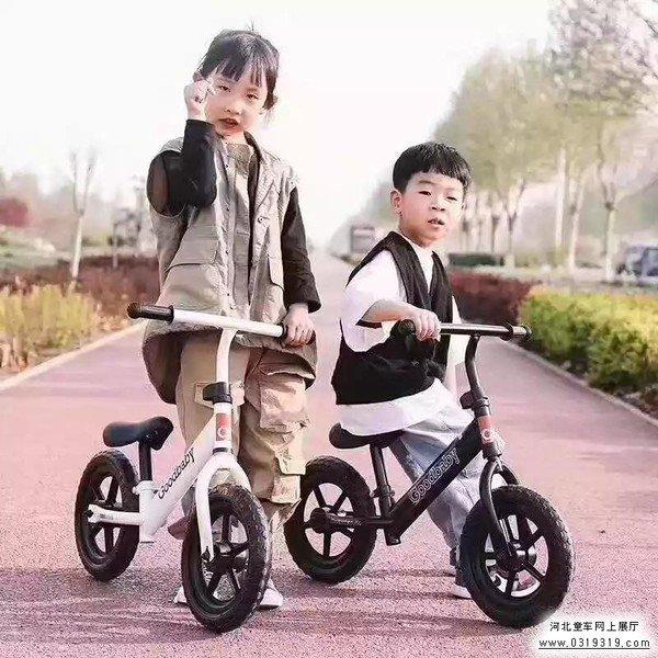 邢台红帅betway必威手机版官网玩具有限公司两轮无脚踏平衡车二维码