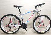 国际品牌!自行车,健民车业有限公司